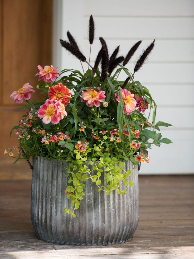 Ideas for small gardens garden shade in 2020 Flower pots
