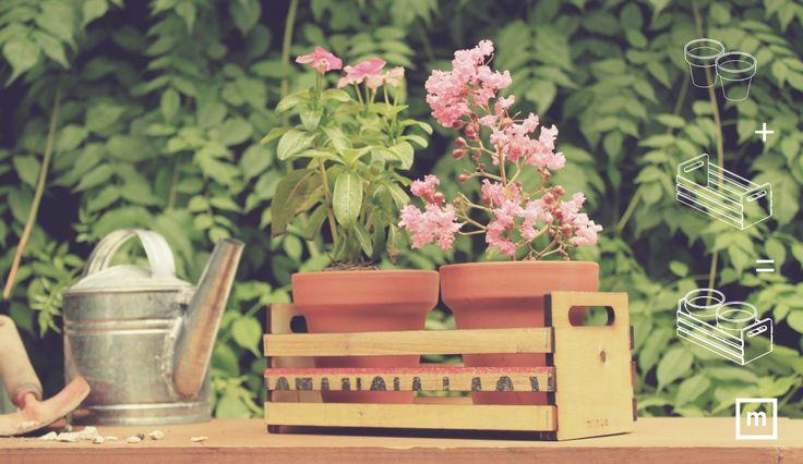 Art. GM01Realizado con maderas recicladas de cajones de verdura y madera de álamo. Cada cajón es único y lleva su propio número de identificación. *Incluye 2 macetas de barro N° 10. (no incluye plantas)DIMENSIONES10,5 x 22,5 x 10 cmSUGERENCIAS DE USO- para tus flores, cactus o aromáticas- en tu patio, cocina o balcón- como centro de mesa¡animate a mandar fruta! Contanos cómo lo usás>>>La Colección MANDÁ FRUTA se compone de 10 cajones de distintos tamaños y combinaciones, pensados para que…