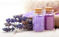 Herbal Sleep Remedies to Help Treat Insomnia, Sleep Apnea