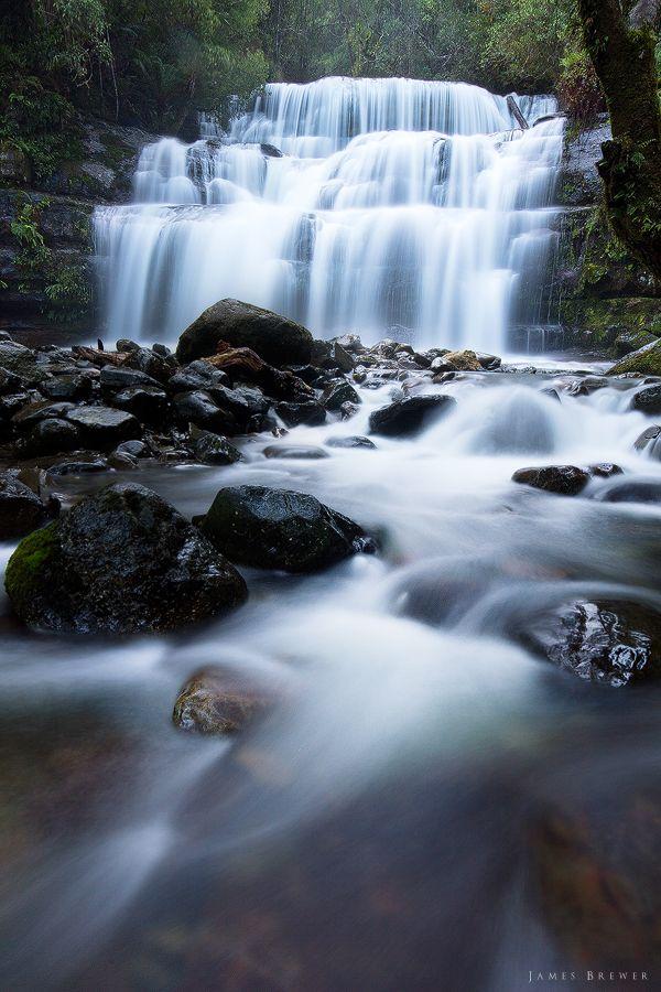 Liffey Falls, Tasmania / Australia