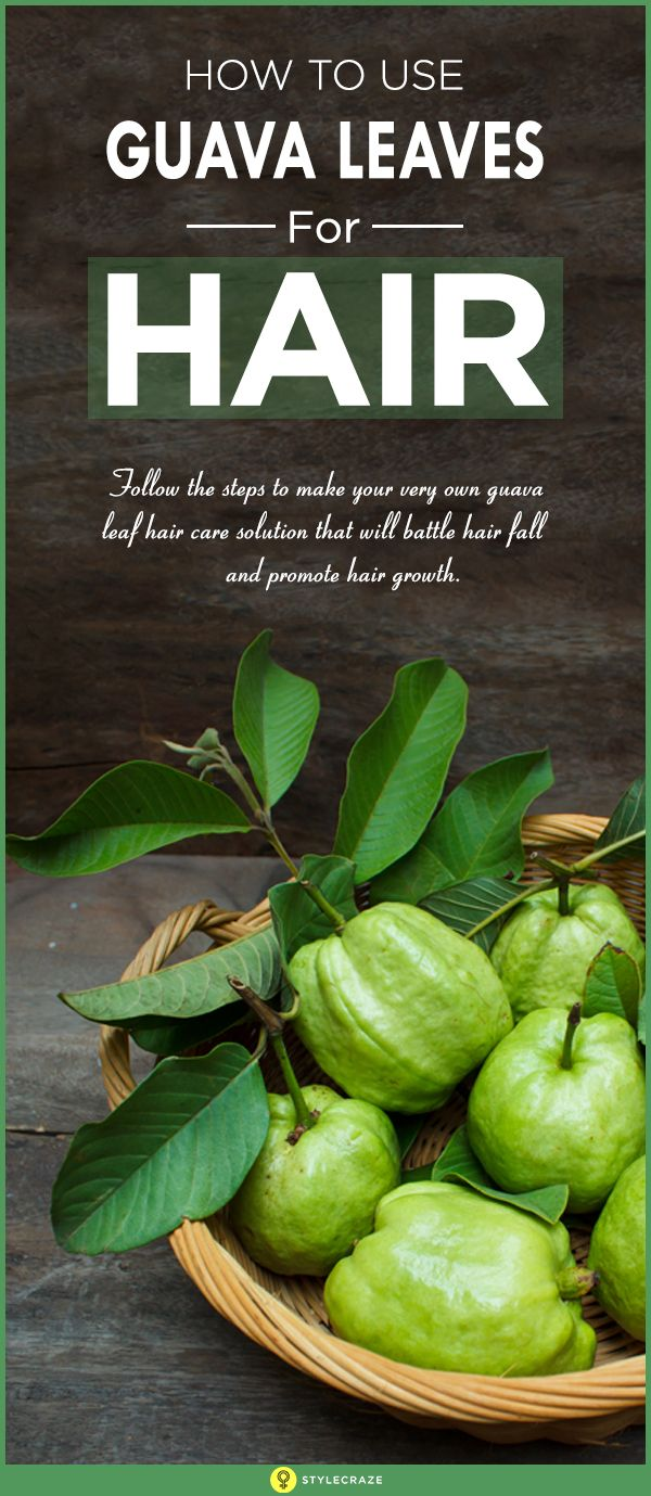 How To Use Guava Leaves For Hair. Below, we have put together a step-by-step guide on how to use guava leaves for healthy hair growth.