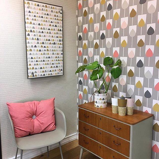 sula wallpaper - Ideas For Wallpaper