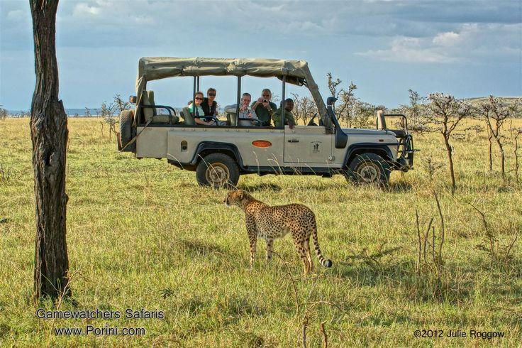 Image result for masai mara safari