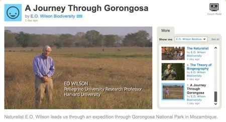 Naturalist E.O. Wilson leads us through an expedition through Gorongosa National Park in Mozambique.