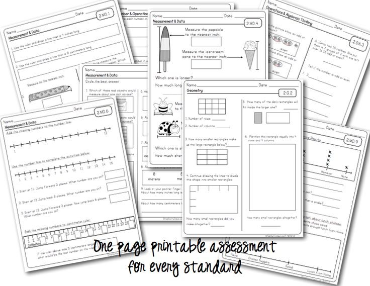 Sunny Days in Second Grade: Common Core Math Assessment
