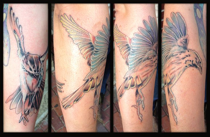 67 best boston tattoo convention artists and artwork for Tattoo shops in salem ma