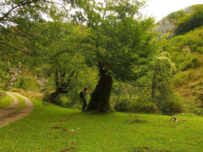 Concejo de Amieva, Asturias. Beyu Pen, la ruta mitológica en Asturias para recorrer con niños