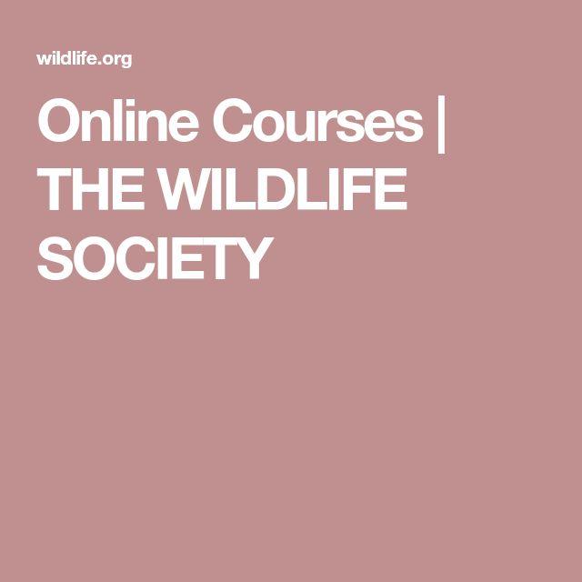 Online Courses   THE WILDLIFE SOCIETY