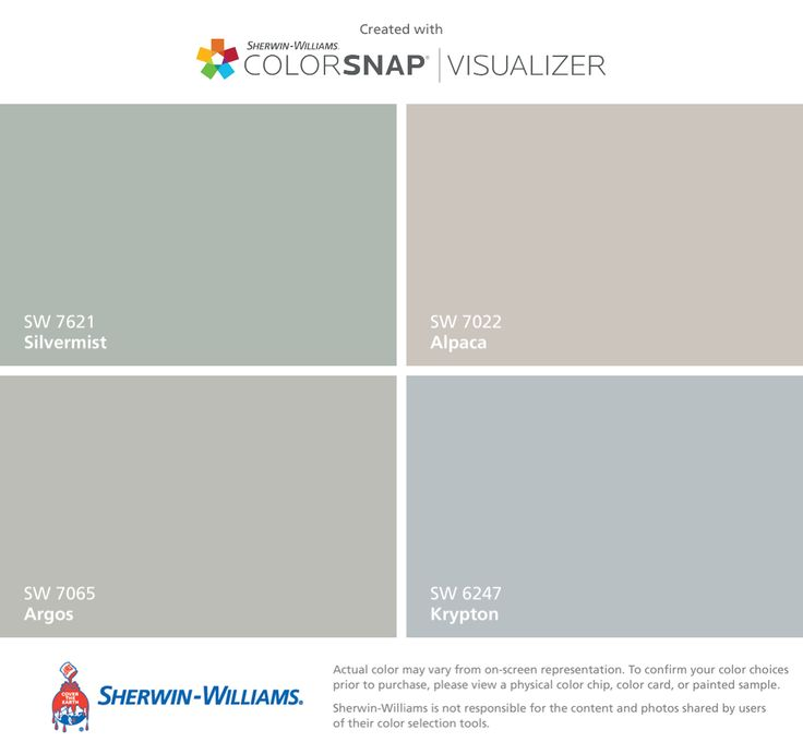 I found these colors with ColorSnap® Visualizer for iPhone by Sherwin-Williams: Silvermist (SW 7621), Argos (SW 7065), Alpaca (SW 7022), Krypton (SW 6247).