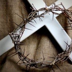 """John 19:5 (KJV)  """"Then came Jesus forth, wearing the crown of thorns, and the purple robe. And Pilate saith unto them, Behold the man!"""""""