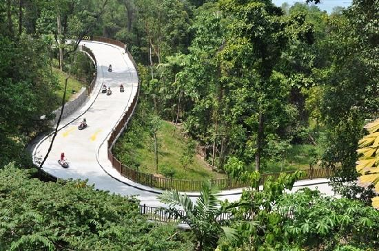 The luge is one of our favorite things to do in Sentosa. I have no pictures of the kids on this ride because I am always racing them down the hill!