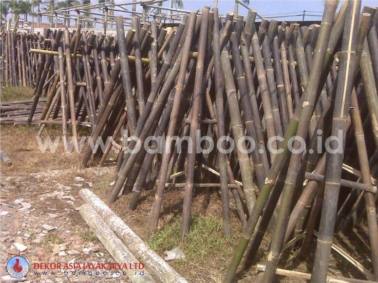 Bamboo Pole - 05