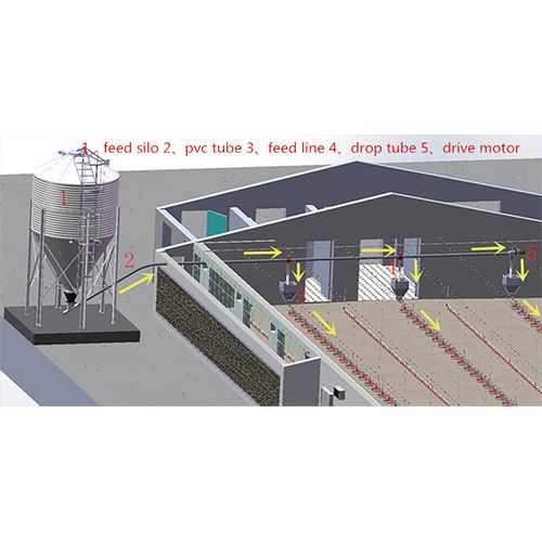 Automated feeding systems are widely used in broilers, layers, ducks, gooses farming. Main feeding system is a complete set of automatic feeding system, including a material conveying pipe,silo, auger, drive motor and a material level sensor.  Guys and girls, welcome to contact me: mail: sara@iherdsman.com whatsapp:+8618739946275