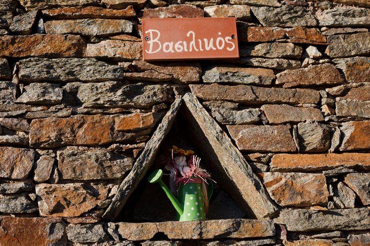 Room 2 - Basil