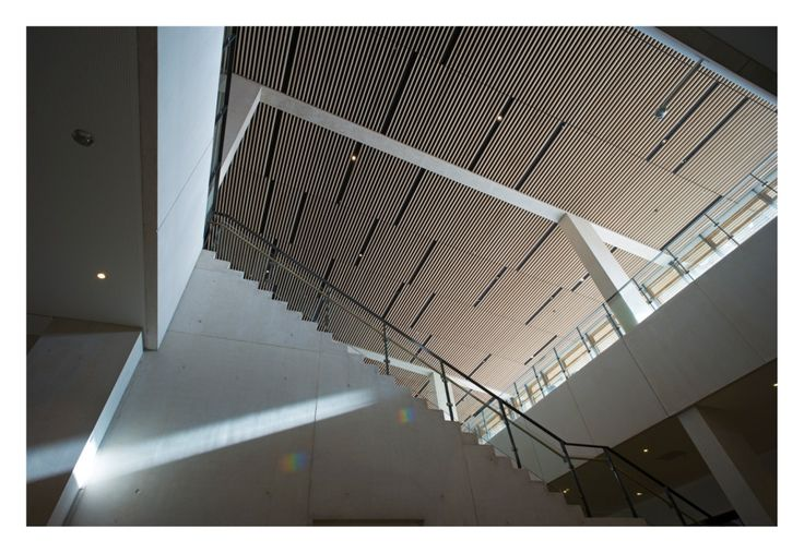 Wooden slats in the ceiling of Moesgaard Museum by Henning Larsen Architects. Photo by Jens Lindhe