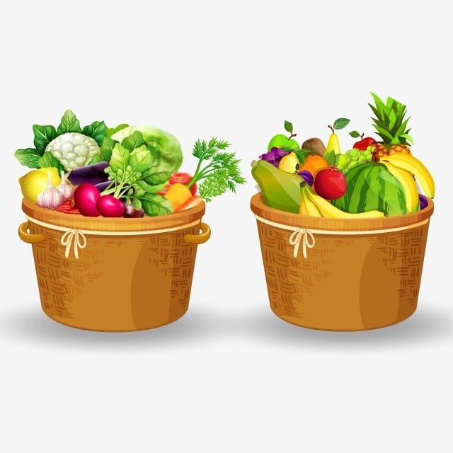 Fruits And Vegetables In Basket Vector Fruits Fruit Png Fruits Vector Png And Vector With Transparent Background For Free Download Fruit Vector Vegetables Fruit