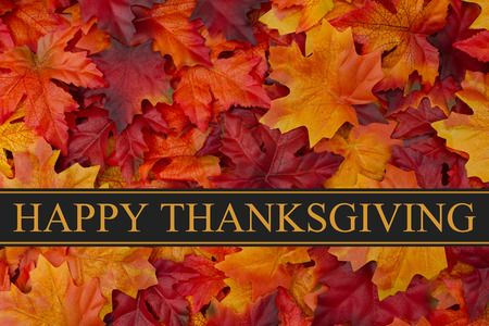 From all of us at Sidney Lee Welding Supply, Georgia's top source for welding supplies, equipment, and argon gas, we wish you and your family a Happy Thanksgiving! We hope you have a wonderful holiday surrounded by great food and loved ones!  http://www.sidneylee.com