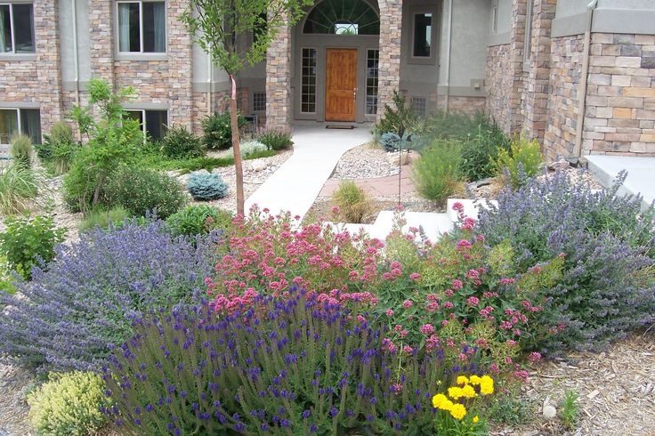 Backyard Landscaping Ideas For Colorado : Best images about berms on gardens shrubs