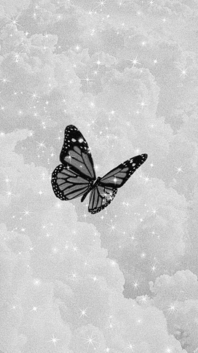 Pin By H O N E Y On Black And White Aesthetic White Wallpaper For Iphone Dark Wallpaper Iphone Butterfly Wallpaper Iphone