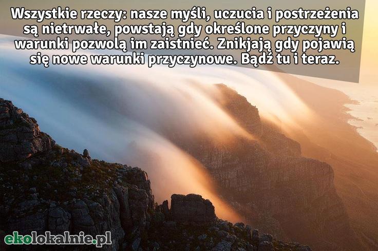 Bądź tu i teraz! z http://ekolokalnie.pl