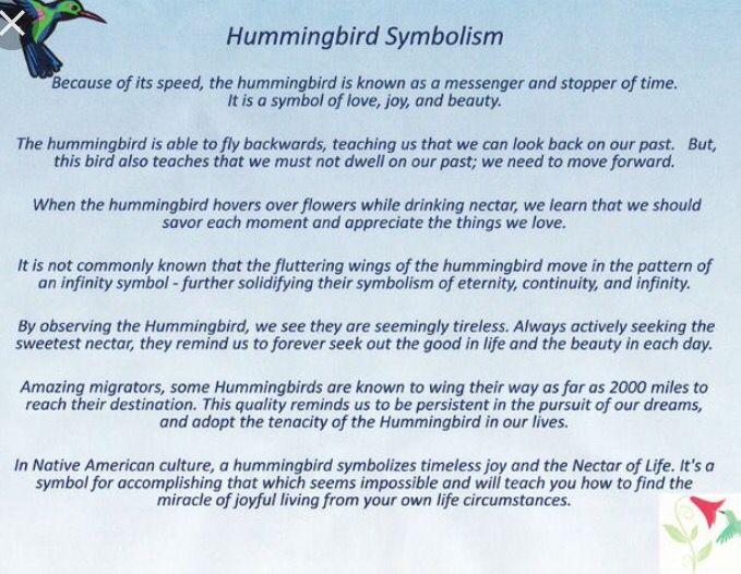 25 best hummingbird quotes on pinterest hummingbird