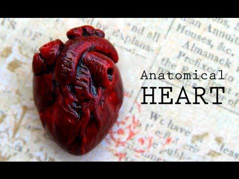 Anatomical Human Heart Polymer Clay Magnet Tutorial. I love this kind of things! ♥