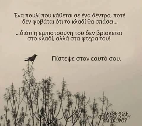 Καθημερινά βλέπουμε στα κοινωνικά δίκτυα εικόνες με φράσεις που θέλουν να εκφράζουν ή να μας προβληματίσουν. Πολλές από αυτές κρύβουν νοήματα πολύ σημαντικά που είναι δύσκολο να τα ερμηνεύσουμε πλήρως.    Η ελληνική γλώσσα είναι τόσο πλούσια