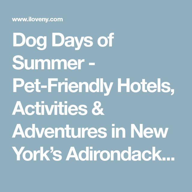 Dog Days of Summer - Pet-Friendly Hotels, Activities & Adventures in New York's Adirondack Park