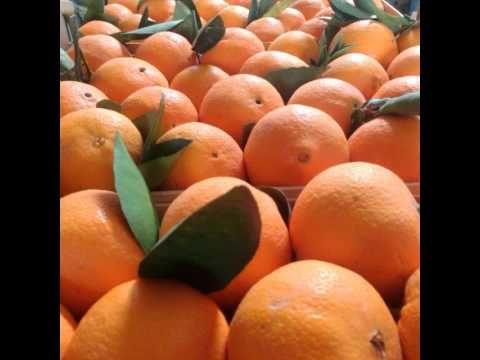 Le nostre arance