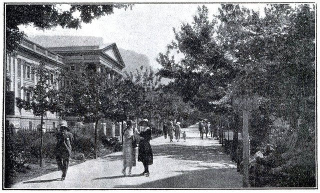 Government Avenue, Cape Town    Travel in South Africa 1924