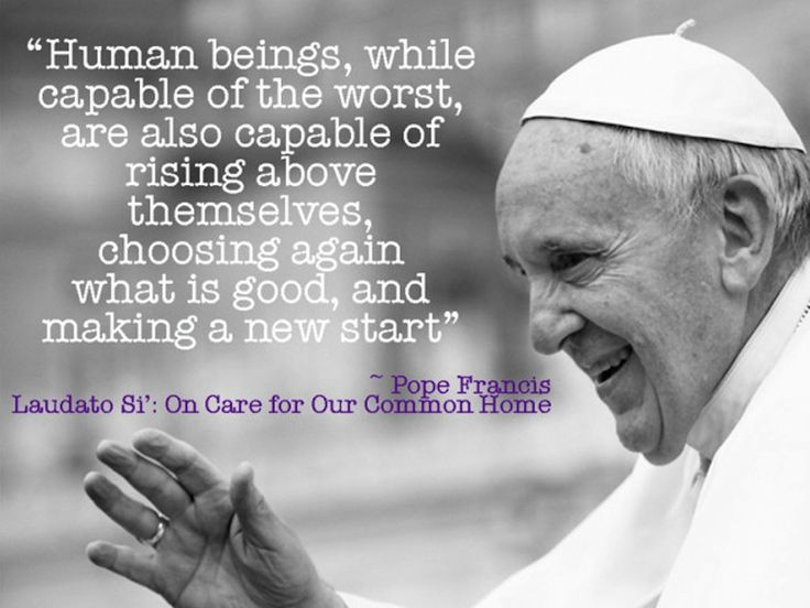 Green Divas Pope Francis Laudato Si': On Care for Our Common Home