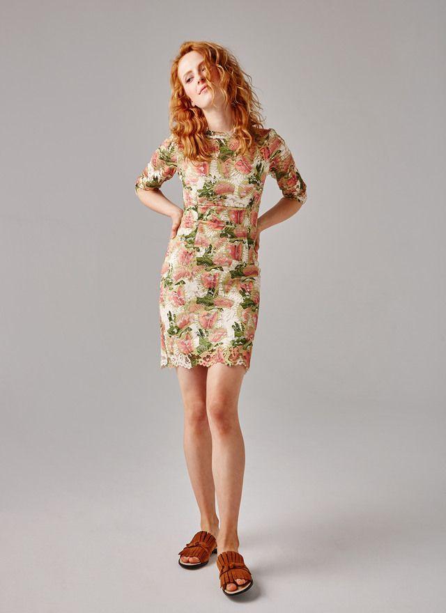 Vestido de encaje print hojas - Vestidos | Adolfo Dominguez shop online