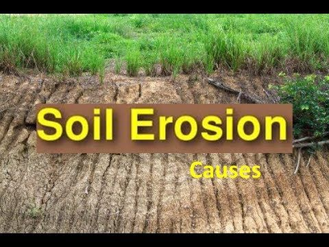 Soil Erosion Causes & Soil Conservation - Video for Kids