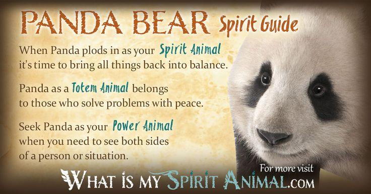 In-depth Panda Bear Symbolism & Panda Bear Meanings! Panda Bear as a Spirit, Totem, & Power Animal. Panda Bear in Celtic & Native American Symbols & Dreams!