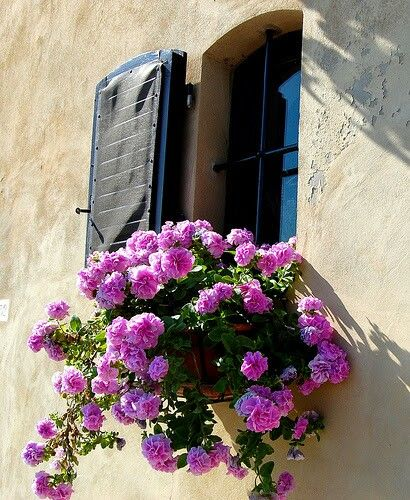 Typical window of mediterraen houses