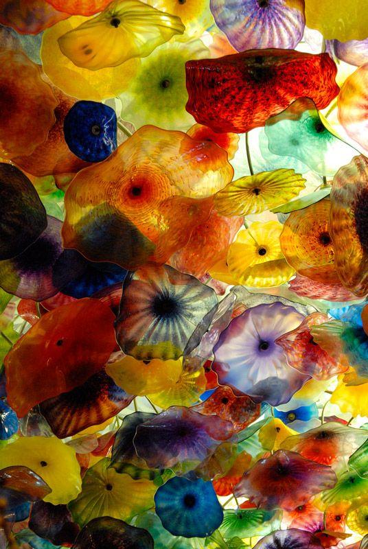 Las VegasGlasses Flower, Las Vegas, Colors, Glasses Jellyfish, Glasses Art, Ceilings, Hotels Lobbies, Jellyfish Umbrellas, Dale Chihuly