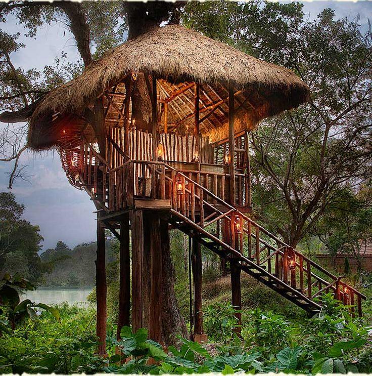 Orange County - Coorg Resort India, treetop dining