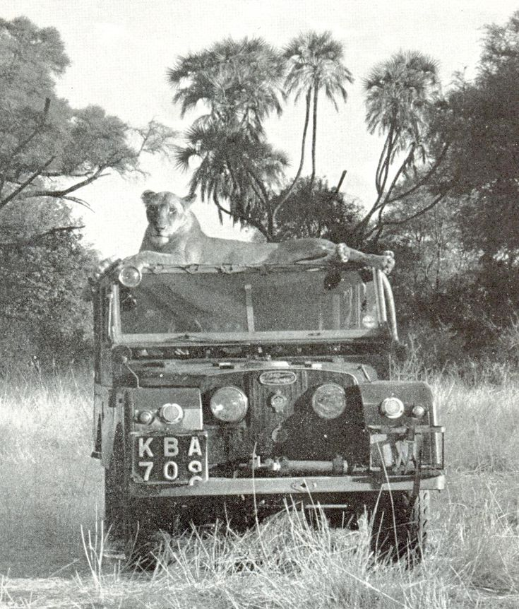 A Land Rover. That is very Out of Africa. Honestly, this whole thing makes me think of Out of Africa. It's just... Where's Robert Redford and Merryl Streep?