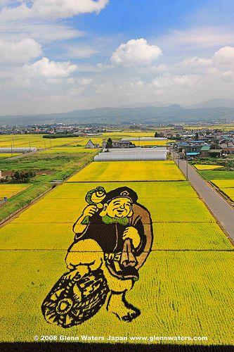 Rice Art. (Hirosaki Japan). © Glenn Waters. Japan. Over 9,000 visits to this photo. Thank you. | Flickr - Photo Sharing!