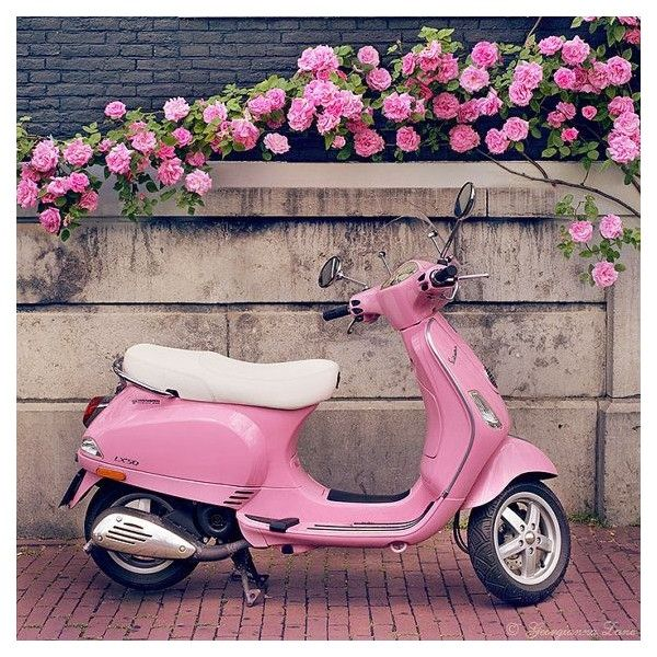 16 Sweet Pictures of Scooters ❤ liked on Polyvore featuring backgrounds, pictures, icons, pink, pics, quotes, text, phrase and saying