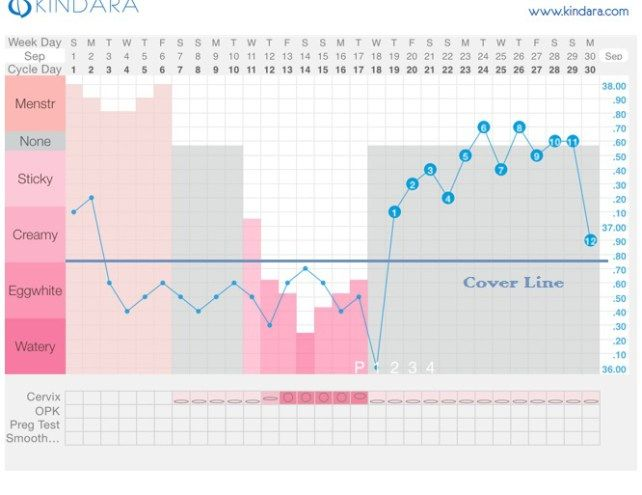 ovulation cover line | Fertility | Natural birth control, Fertility