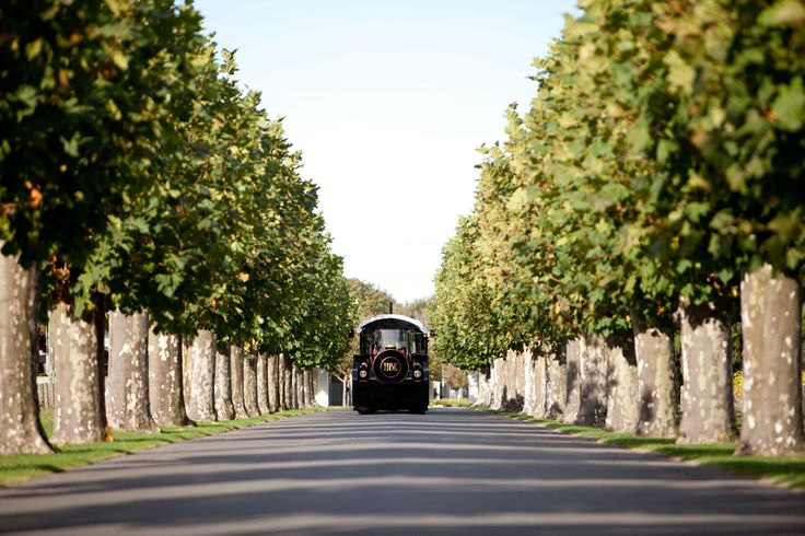 Gorgeous Art Deco Wedding by Eva Bradley - Mission Estate Winery HAWKES BAY