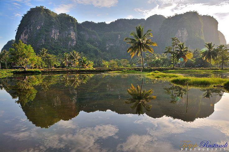 Stone Forest Karst Sulawesi
