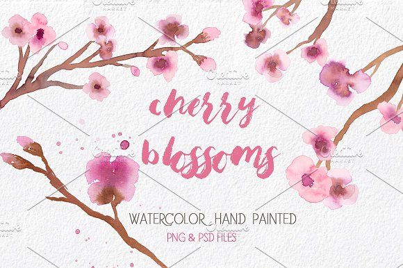 Cherry Blossoms Clip Art - Elegant and romantic illustrations painted in original watercolor:branches,flowers,separate branches and wreaths by MARAQUELA.