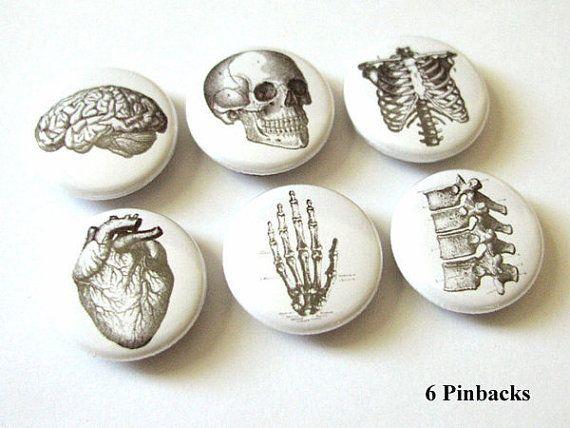 Anatomy 1 inch PINBACKS PINS BADGES hand brain skull anatomical heart anatomy human body bones skeleton geekery button stocking stuffer on Etsy, 3,78€
