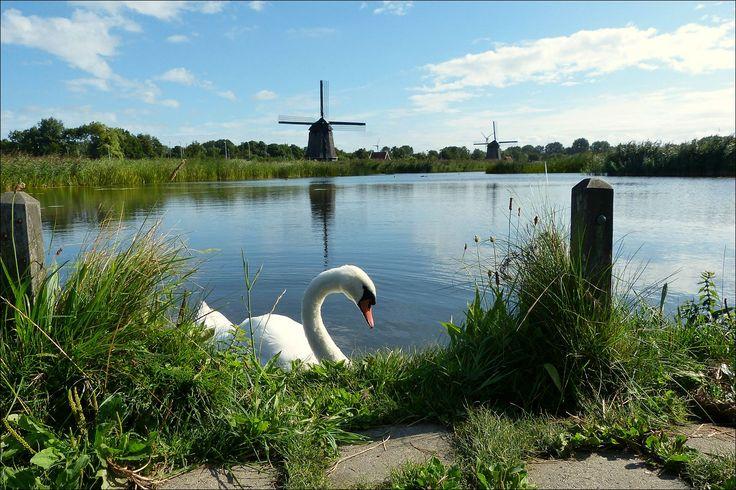 Near ALKMAAR in the Netherlands...