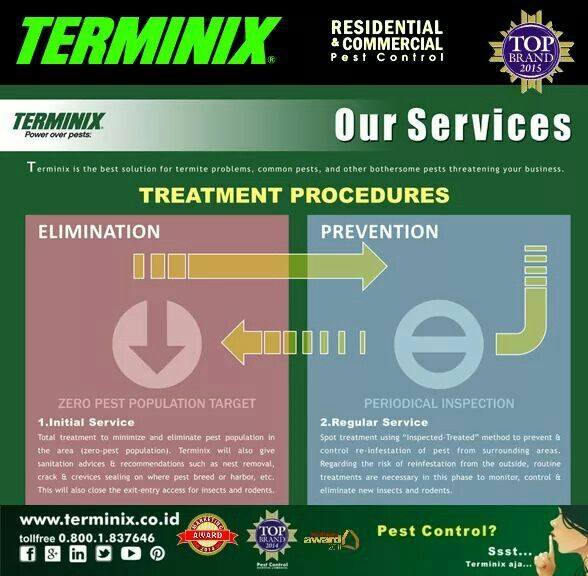 Prosedur Treatment Terminix