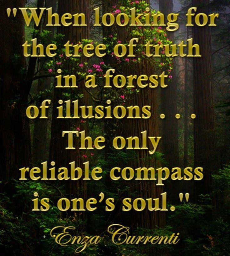 When looking for the tree of truth...