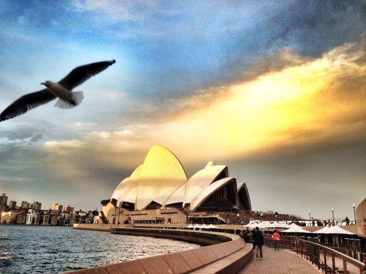 Sydney Opera Hall