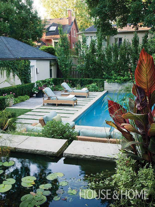 This lily pond is a nice organic touch which balances out the rigidity of the pool and landscaping beyond. | Photographer: Donna Griffith | Designer: Mark Hartley Landscape Architects